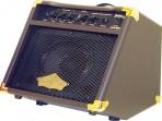 Wahsburn Amplificador Guitarra Electroacustica  ( PRODUCTO  AGOTADO )