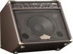 Amplificador  Washburn  WA 30
