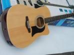Guitarra Washburn Folk   GWLG 2 CE con Equalizador Washburn  PACK Incluye funda