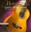 Juego  Cuerdas Nylon Magma GC 120 Para Guitarra
