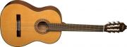 Guitarra Washburn Clásica C 40