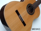 Guitarra Alhambra 1 C  Española Cuerdas Nylon, Incluye Funda