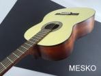 Guitarra Cort AC 100 DX - OP  Opaca, Cuerdas Nylon, Inclue Funda