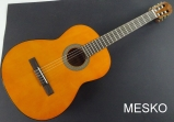 Guitarra Cort AC 100 DX - YT  Brillante, Cuerdas Nylon, Incluye Funda